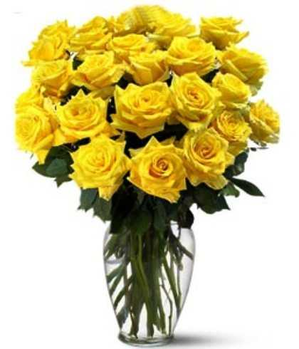 Flower of friendship day the yellow rose one world news mightylinksfo