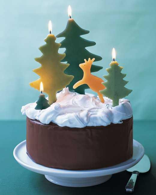 Delicious Chocolate Cake with Snowy Meringue