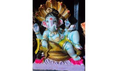 Now fish can consume Ganesh Idols!