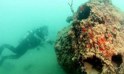 Archeologists find Pearl Harbour airplane