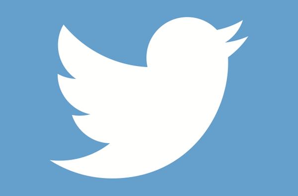 alltwitter-twitter-bird-logo-white-on-blue_6