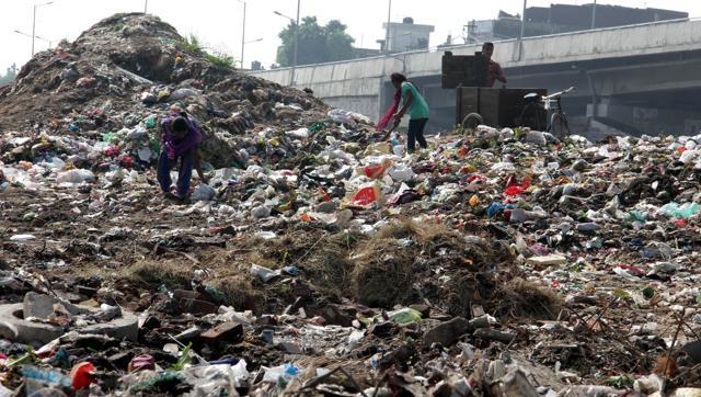 ludhiana-ludhiana-september30-garbage-wednesday-september-hindustan_acc3fbee-6986-11e5-bbf7-304db831dbb1