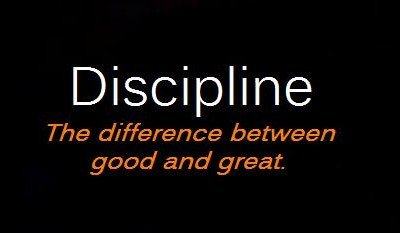 Pleasure of being a disciplined bee!