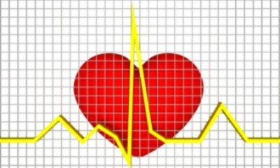 Research establishes link between fats and heart disease