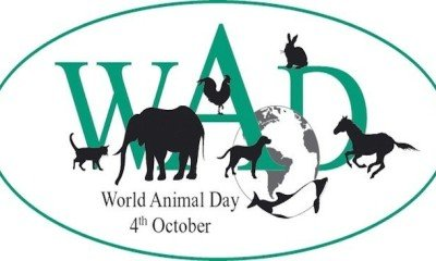 October 4 marks World Animal Day!