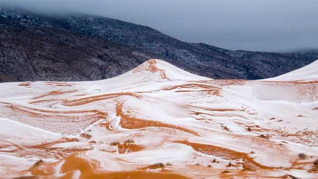 Sahara Desert finally witnessed in snow storm
