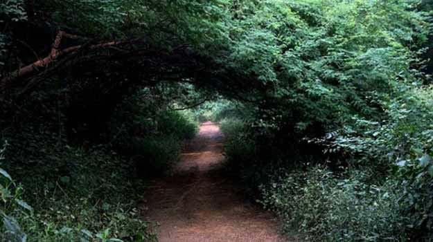 Five unexplored weekend getaways near Delhi - NCR
