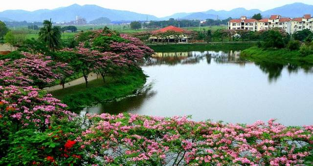 Here is why you should travel Guwahati once in a lifetime