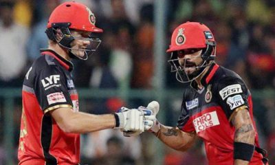 Shane Watson will be the interim captain of RCB