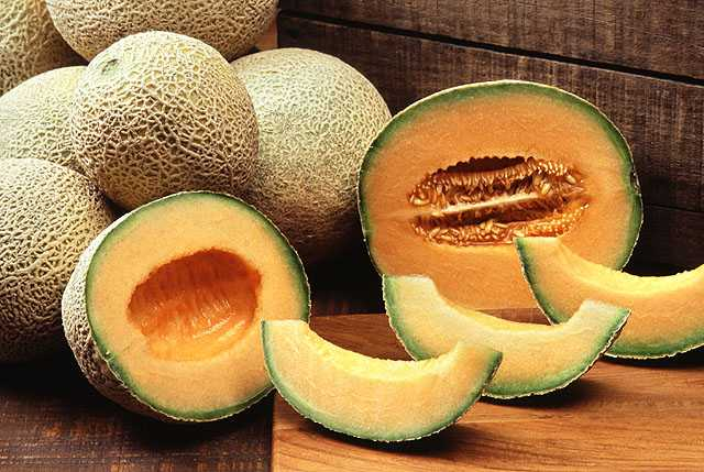 Healthy Cantaloupes or Muskmelons