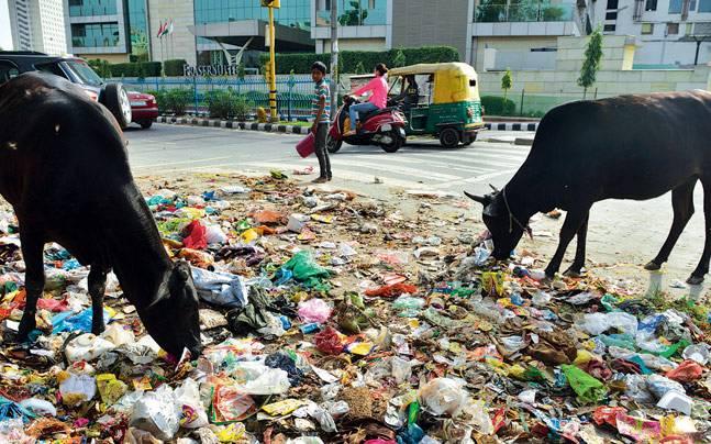 Waste in Delhi
